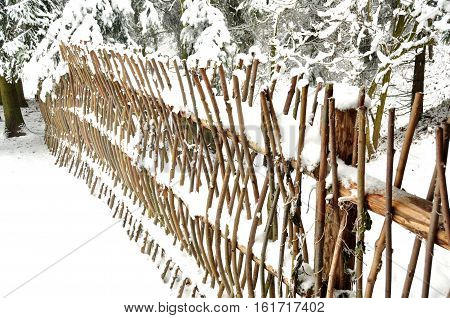 Snowbound twig fence in the coniferous forest close up.