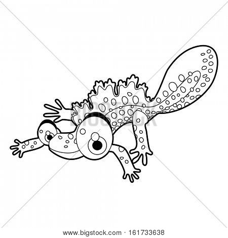 coloring pattern page. Funny cute cartoon animals.  Reptiles. Newt