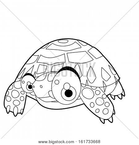 coloring pattern page. Funny cute cartoon animals.  Reptiles. Tortoise