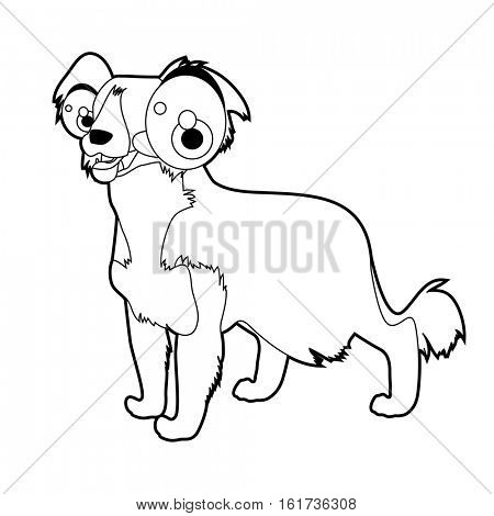 vector funny coloring animal dog breeds character book collection. Cool cute cartoon flat thin line style illustration of Collie