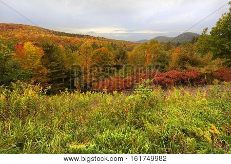Beautiful sky and trees at the Adirondack Mountain in Autumn