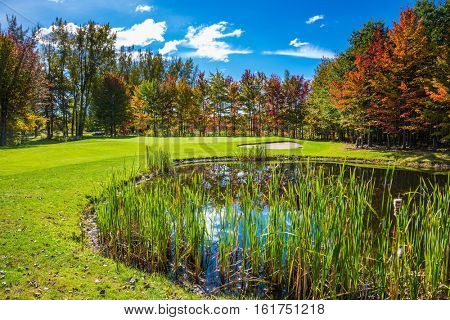 Concept of recreational tourism. Shining day in French Canada. Charming  pure pond overgrown with reeds. Autumn foliage reflected in clear water of the pond