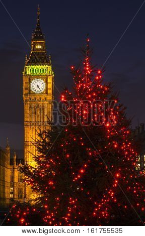 A view of a beautiful illuminated Christmas tree with the Elizabeth Tower of the Houses of Parliament in the background London.