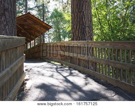 A covered walkway with wood railing that crosses Wychus Creek and is lodged between two large ponderosa pine trees in a park in Sisters in Central Oregon on a summer day.