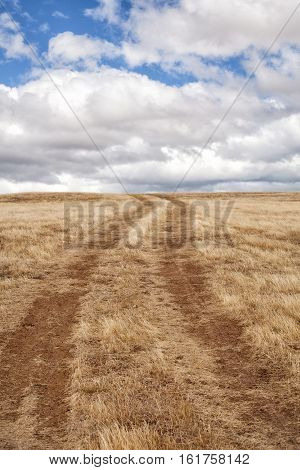 Dirt Track In A Paddock