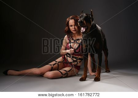 Sexy brunette in lace lingerie and leather belts posing with a doberman dog in studio