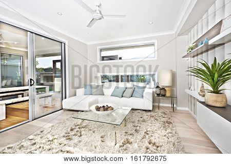 Modern living room interior of a luxury house with carpet on the wooden floor near the white sofa and fancy plant beside the glass door