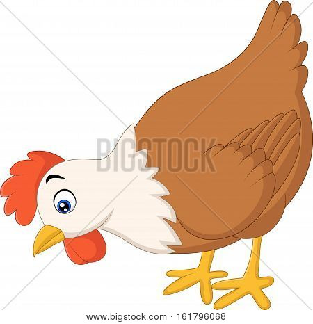 Vector illustration of Hen cartoon find food on white background