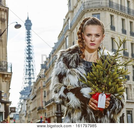 Trendy Fashion-monger With Christmas Tree In Paris, France