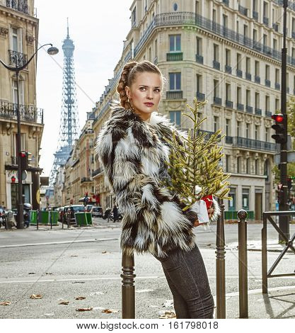 Relaxed Fashion-monger With Christmas Tree Looking Aside, Paris