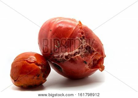 Two Rotten Tomatoes Isolated On White