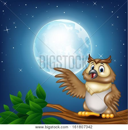 Vector illustration of Cartoon owl on a tree branch in the night