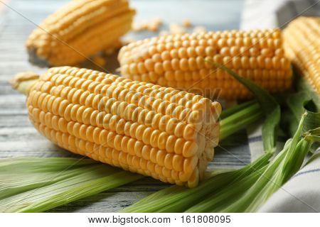 Fresh corncobs on napkin, closeup