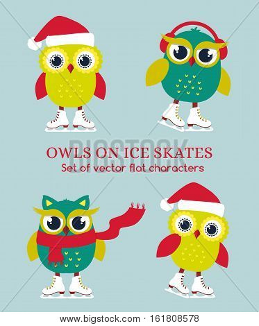 Funny owls on ice skates. Set of cute characters isolated on plain background. Vector illustration.