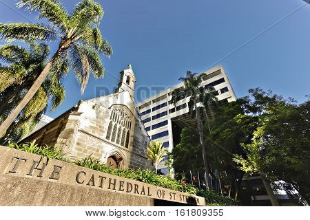 panoramic look cathedral church with palms and trees
