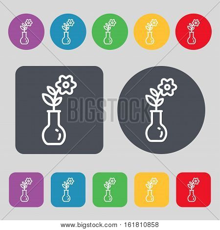 Flower In Vase Icon Sign. A Set Of 12 Colored Buttons. Flat Design. Vector