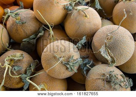 Heap of ripe melons on a counter in a grocery shop. Melons for sale. Horizontal. View from above. Close up.