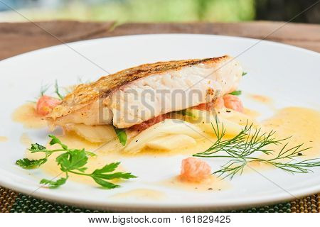 Pike perch fillet with leeks and beurre Blanc served in a white plate closeup