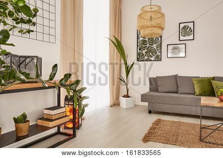 Cozy Home With Decorative Houseplants