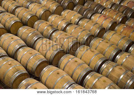 Barrels In Wine Cellar-bordeaux Wineyard