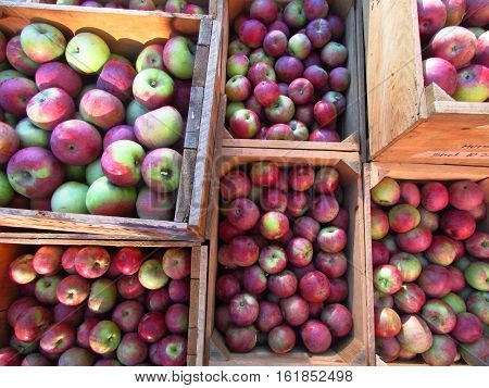 Overlapping crates of red apples at a farm stand.
