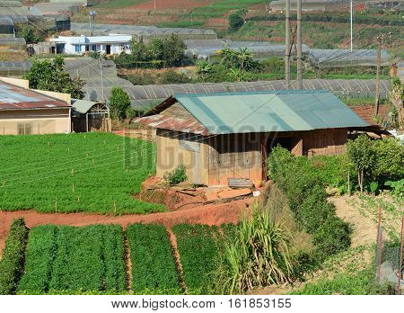 Houses With Farm In Dalat, Vietnam