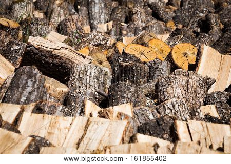 Dried cut and split logs on a wood pile for winter fuel in a concept of renewable energy and natural resources