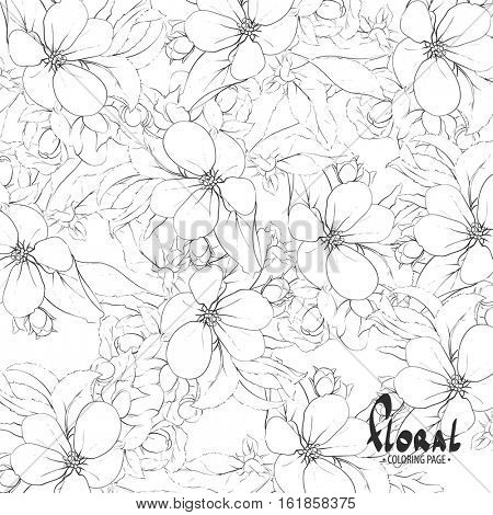 Black and white apple blossoms on white background
