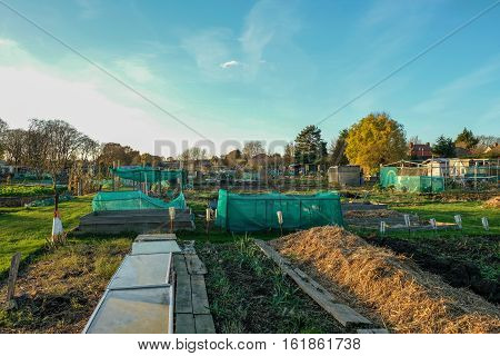Allotments are small plots of land that you rent and cultivate yoursellf.