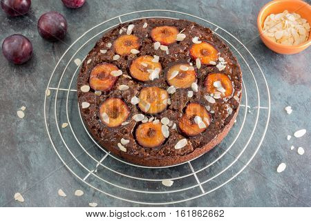 Closeup of a homemade sticky chocolate plum cake on cooling rack freshly glazed with apricot jam and decorated with almond slivers. In the background fresh plums and almond slivers in a terracotta bowl.