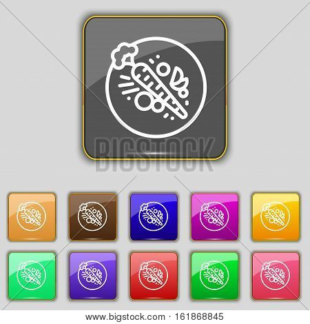 Carott Icon Sign. Set With Eleven Colored Buttons For Your Site. Vector
