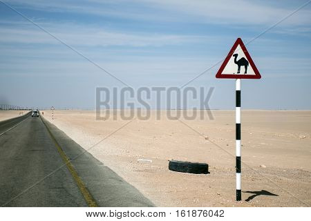 Camel warning sign desert highway in dhofar salalah Oman the Middle East
