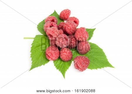 Rasp berry isolated on a white background with clipping path