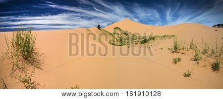 Panorama of the Coral Pink Sand Dunes near Kanab Utah.