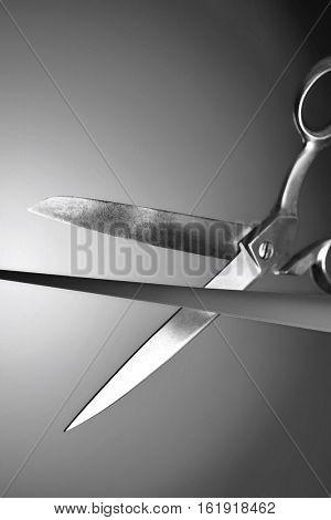 Scissors cutting red ribbon in studio