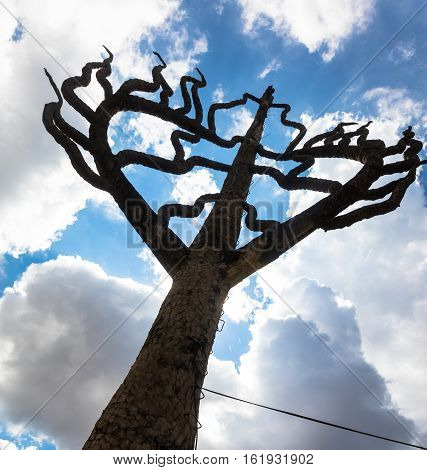 The Tree of Life is a timeless symbol of our connections to everything around us and a powerful reminder that our happiness and health are inextricably intertwined with the happiness and health of all living things