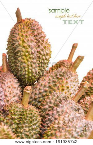 Durian, Famous Fruit In Thailand