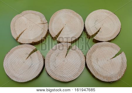 Six rough unpolished fir saw cuts with cracks on green background.