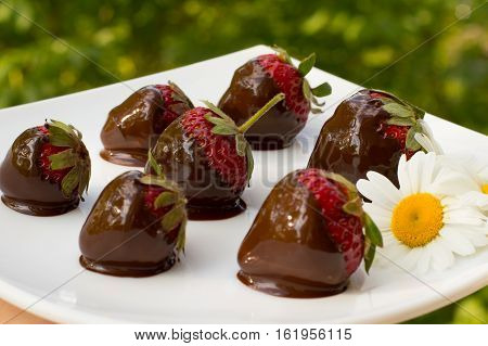 Strawberries dipped in chocolate on a white square plate