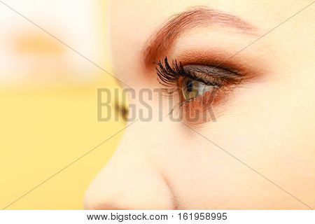 Visage concept. Woman with full eyes make up. Eyeshadow brows eyelashes