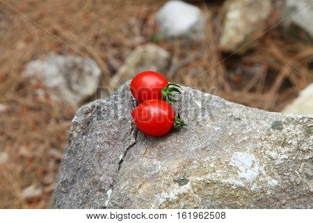 A Pair Of Cherry Tomatoes On The Ancient Ruins