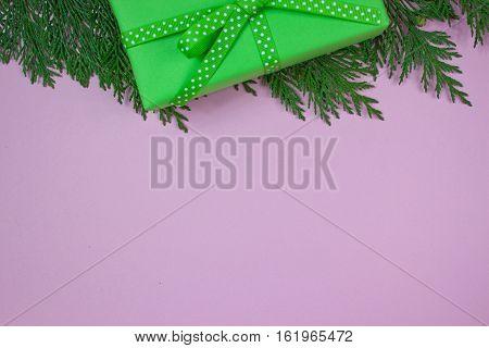 Green gift wit polka dot ribbon on cypress