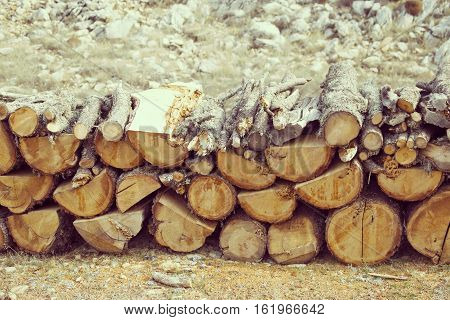 A lot of firewood stacked and ready for use.