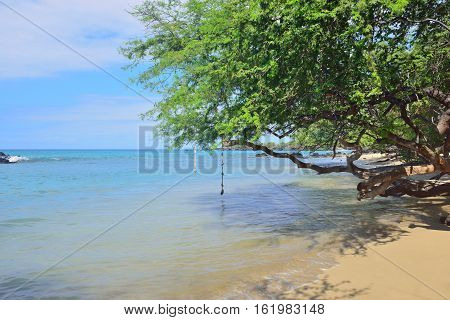 Bungee Jump At The Tropical Beach Of Hawaii Big Island