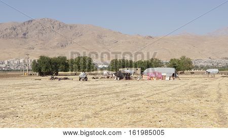 KERMANSHAH, IRAN - OCTOBER 3, 2016: Camp of nomads close to Kermanshah on October 3, 2016 in Iran, Asia