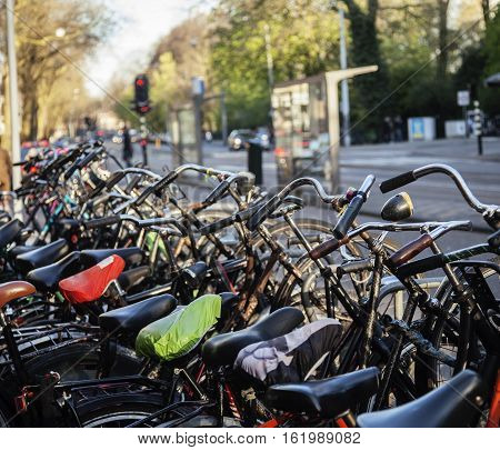 many bicycles on street of Amsterdam city, parking ideal traffic eco healthy lifestyle concept close up at sunlight, health care real stuff