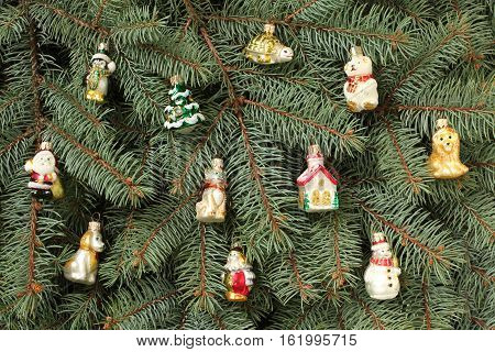 Winter composition - blue spruce tree twigs and toys background