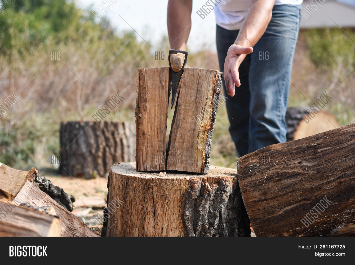 Lumberjack Chopping Image Photo Free Trial Bigstock