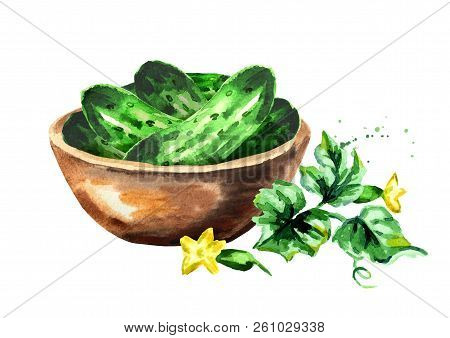 Bowl With Cucumbers. Watercolor Hand Drawn Illustration, Isolated On White Background