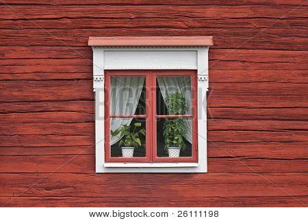 Söt fönster på röda väggen